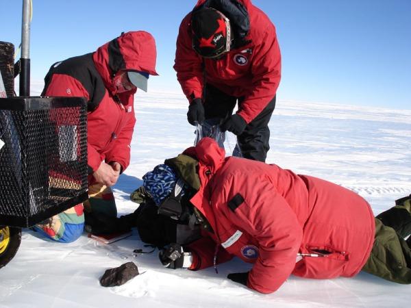 Meteorite hunters in Antarctica