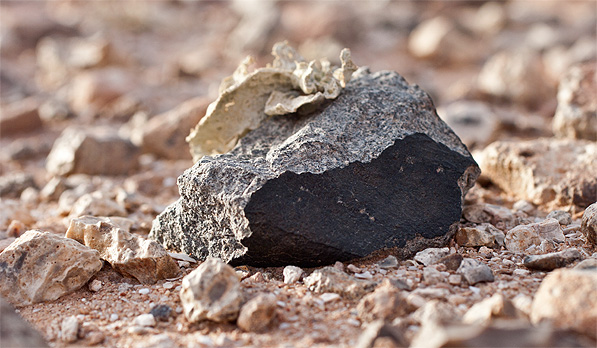 Meteorite found in the Sahara Desert