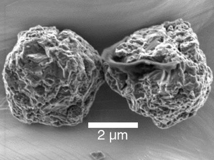 These are presolar silicon carbide grains from the matrix of Murchison meteorite.